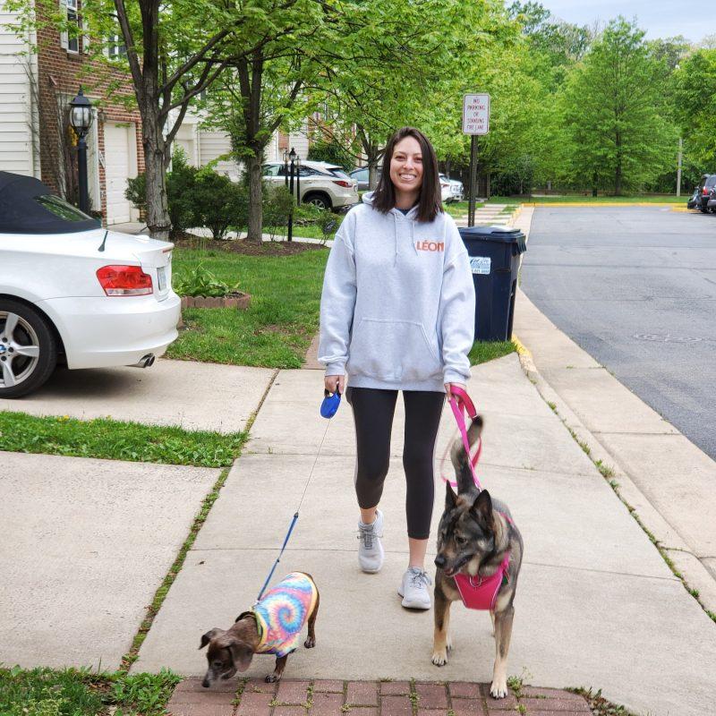 Rachel walking her dogs