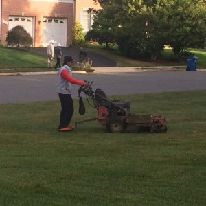 Has a non-English-speaking lawn maintenance worker willfully violated a safety rule if he could not read the instructions on a commercial mower?